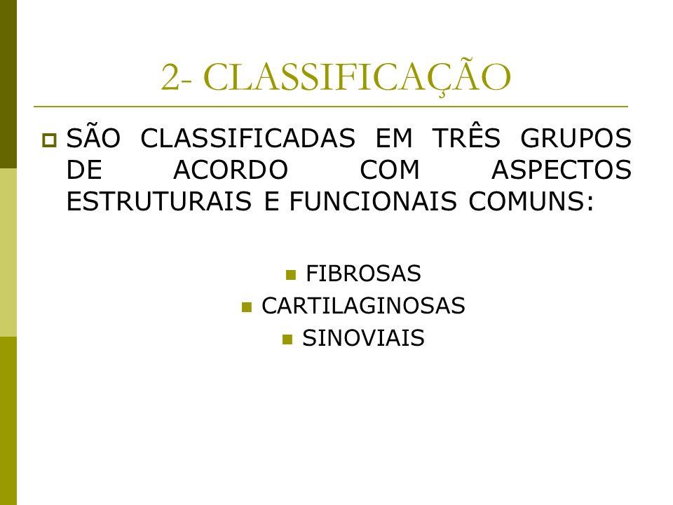 2- CLASSIFICAÇÃOSÃO CLASSIFICADAS EM TRÊS GRUPOS DE ACORDO COM ASPECTOS ESTRUTURAIS E FUNCIONAIS COMUNS: