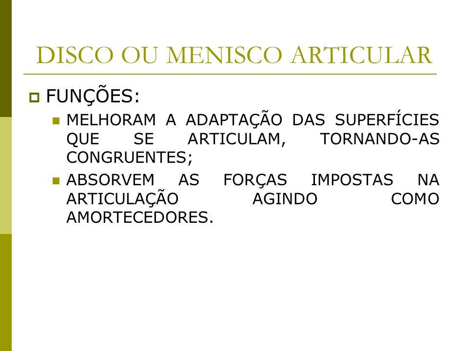DISCO OU MENISCO ARTICULAR