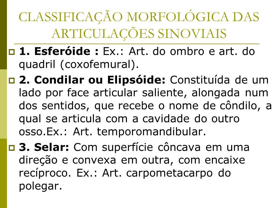 CLASSIFICAÇÃO MORFOLÓGICA DAS ARTICULAÇÕES SINOVIAIS