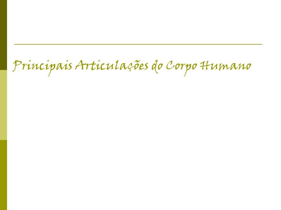 Principais Articulações do Corpo Humano