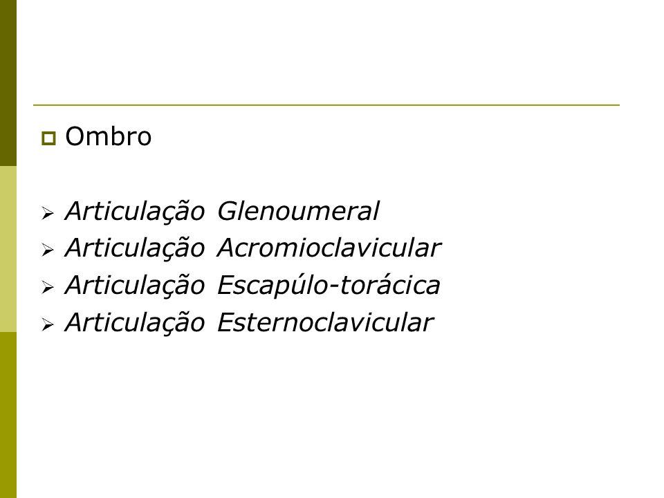 Ombro Articulação Glenoumeral. Articulação Acromioclavicular.