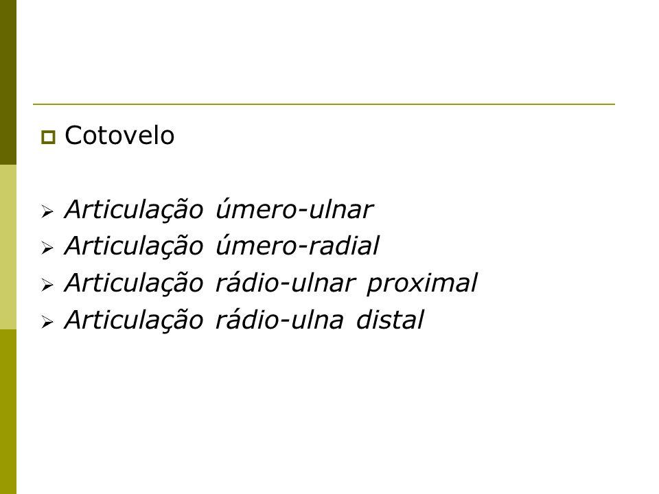 Cotovelo Articulação úmero-ulnar. Articulação úmero-radial.