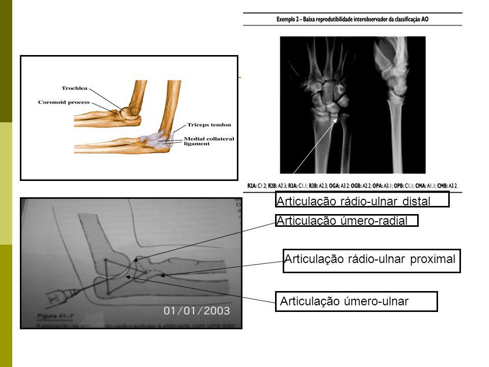 Articulação rádio-ulnar distal
