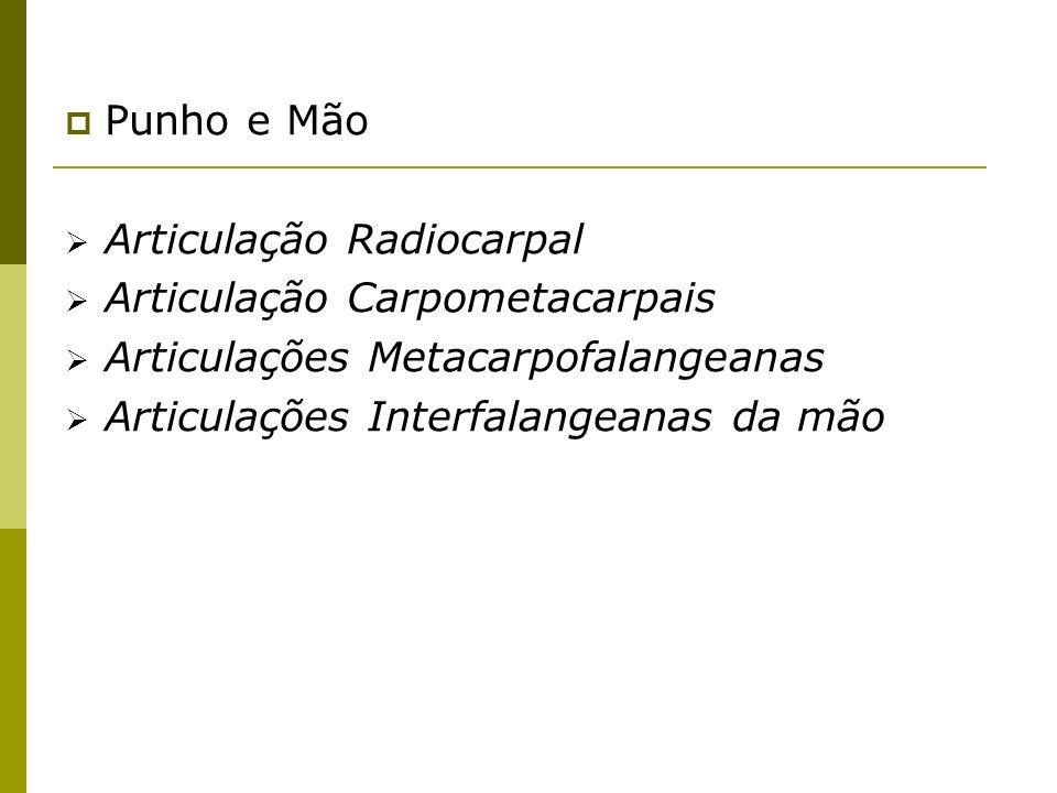 Punho e MãoArticulação Radiocarpal. Articulação Carpometacarpais. Articulações Metacarpofalangeanas.