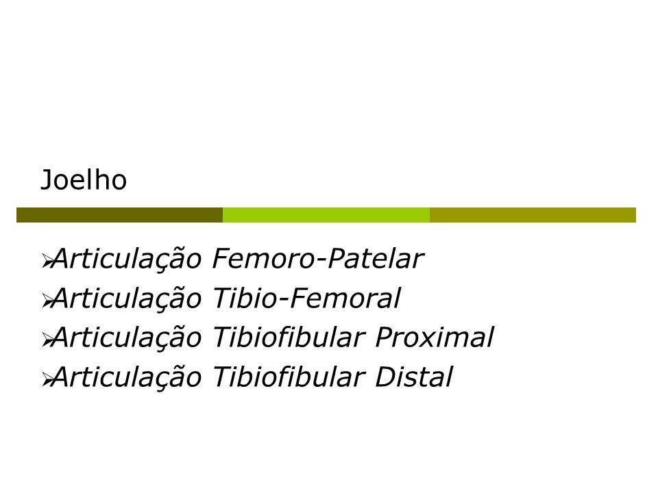 Joelho Articulação Femoro-Patelar. Articulação Tibio-Femoral.