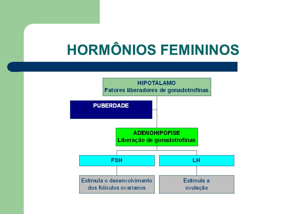 HORMÔNIOS FEMININOS www.bioloja.com