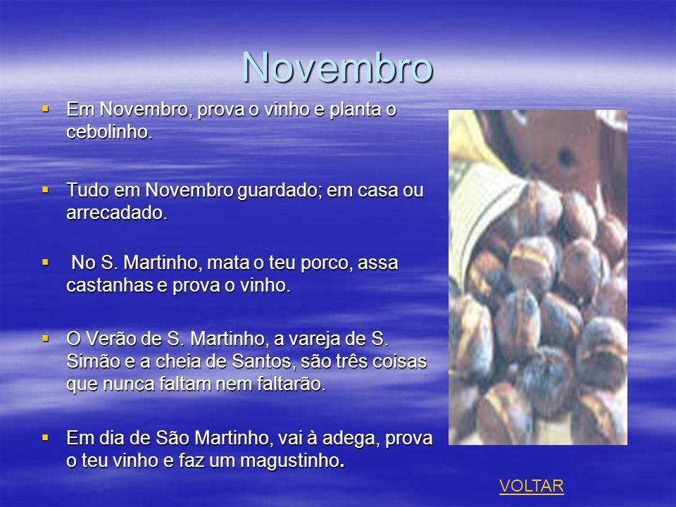 Novembro Em Novembro, prova o vinho e planta o cebolinho.