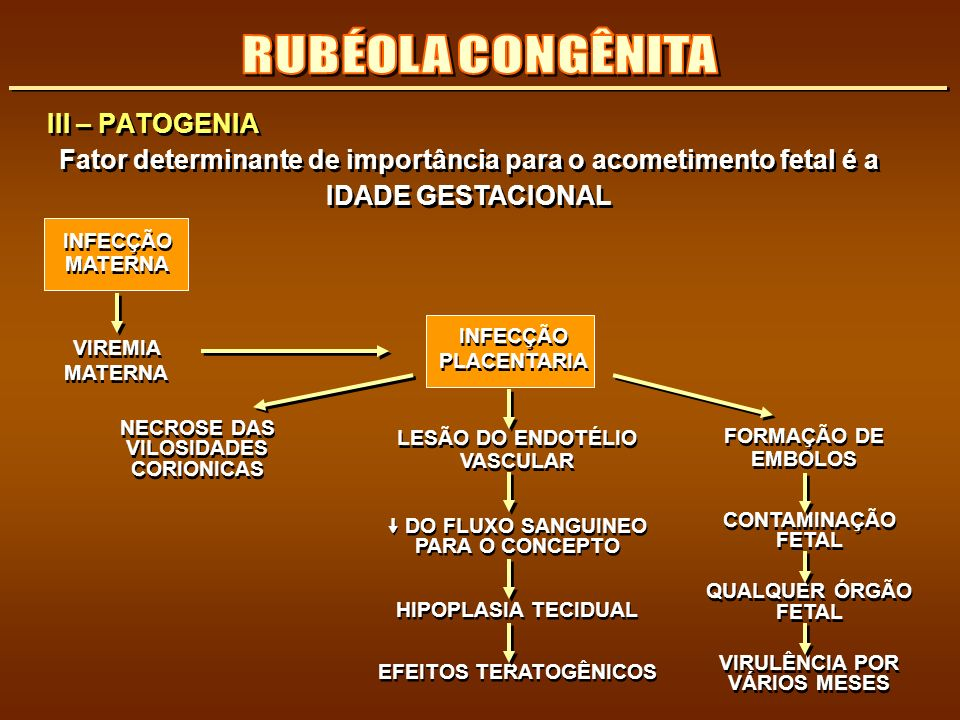 RUBÉOLA CONGÊNITA III – PATOGENIA