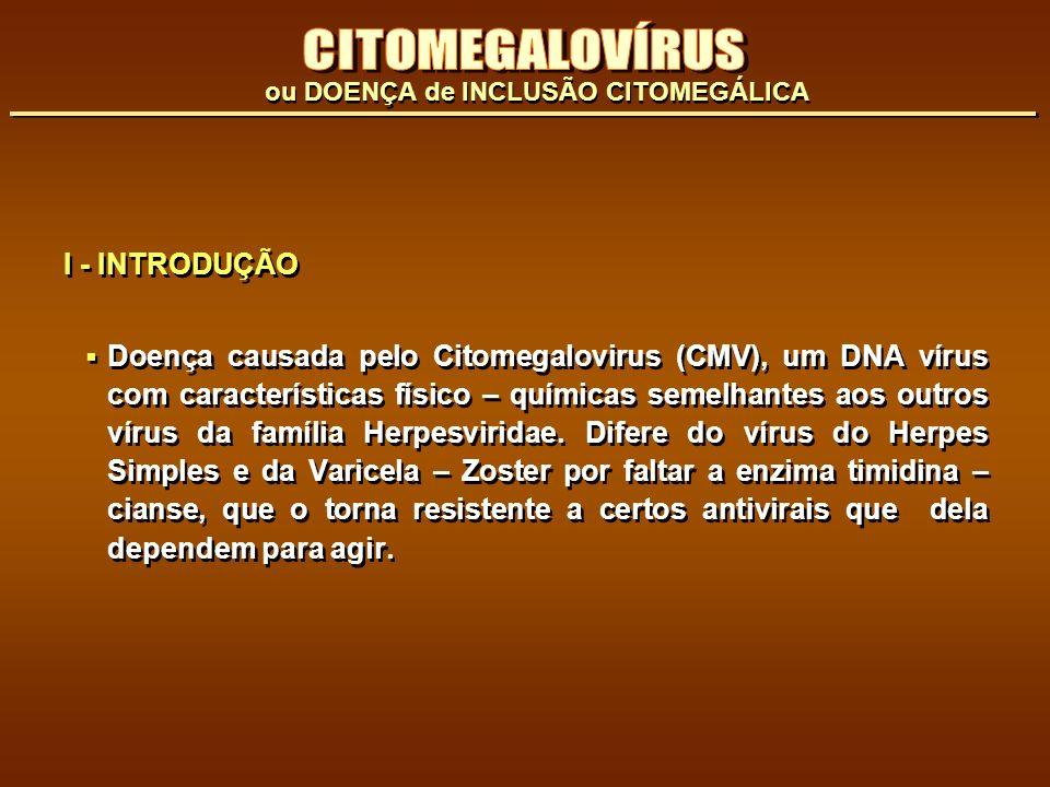 CITOMEGALOVÍRUS I - INTRODUÇÃO
