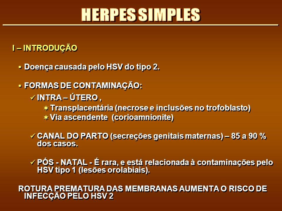 HERPES SIMPLES I – INTRODUÇÃO Doença causada pelo HSV do tipo 2.