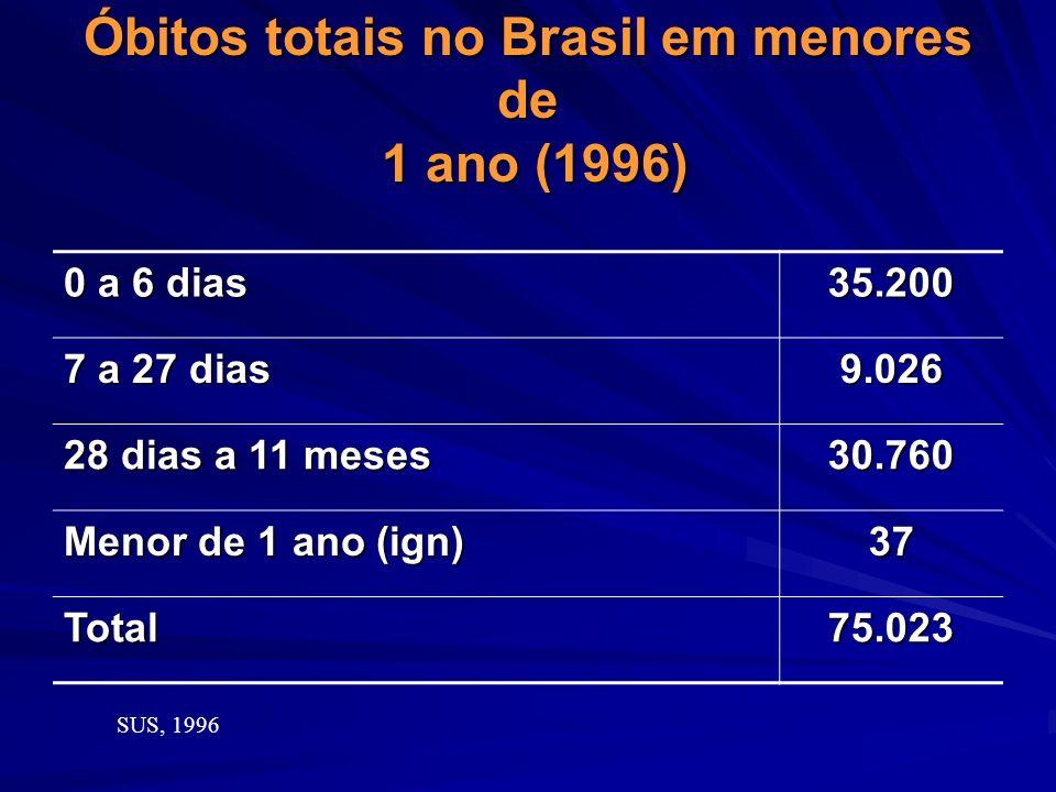 Óbitos totais no Brasil em menores de 1 ano (1996)