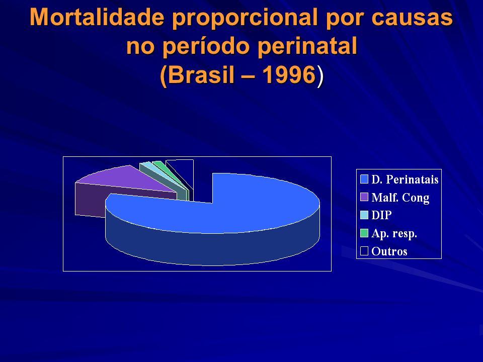 Mortalidade proporcional por causas no período perinatal (Brasil – 1996)