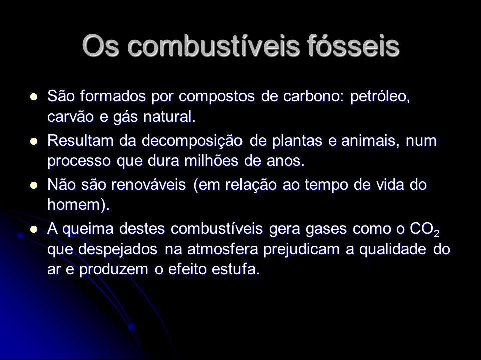 Os combustíveis fósseis