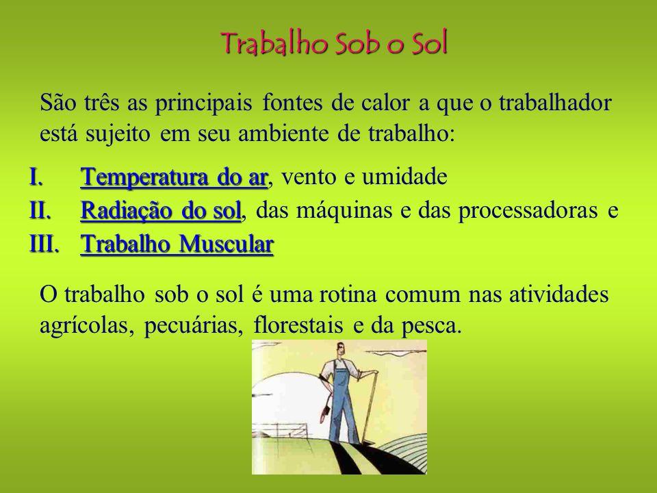 Trabalho Sob o Sol São três as principais fontes de calor a que o trabalhador está sujeito em seu ambiente de trabalho:
