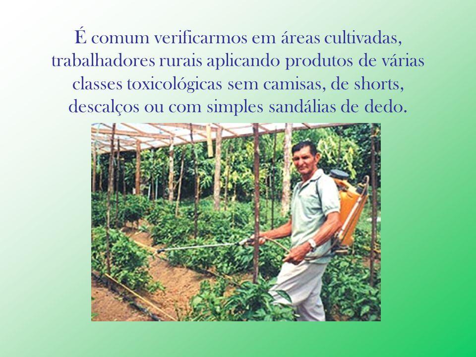 É comum verificarmos em áreas cultivadas, trabalhadores rurais aplicando produtos de várias classes toxicológicas sem camisas, de shorts, descalços ou com simples sandálias de dedo.