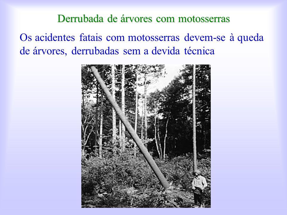Derrubada de árvores com motosserras