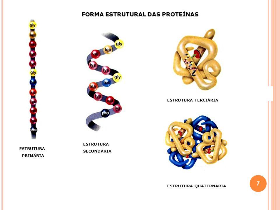 FORMA ESTRUTURAL DAS PROTEÍNAS