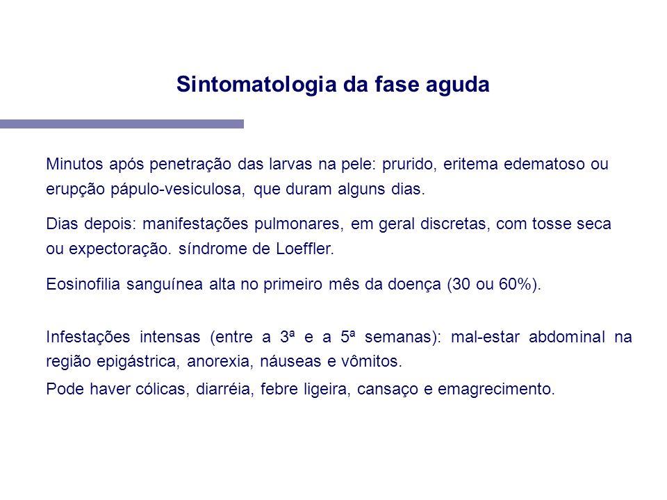 Sintomatologia da fase aguda