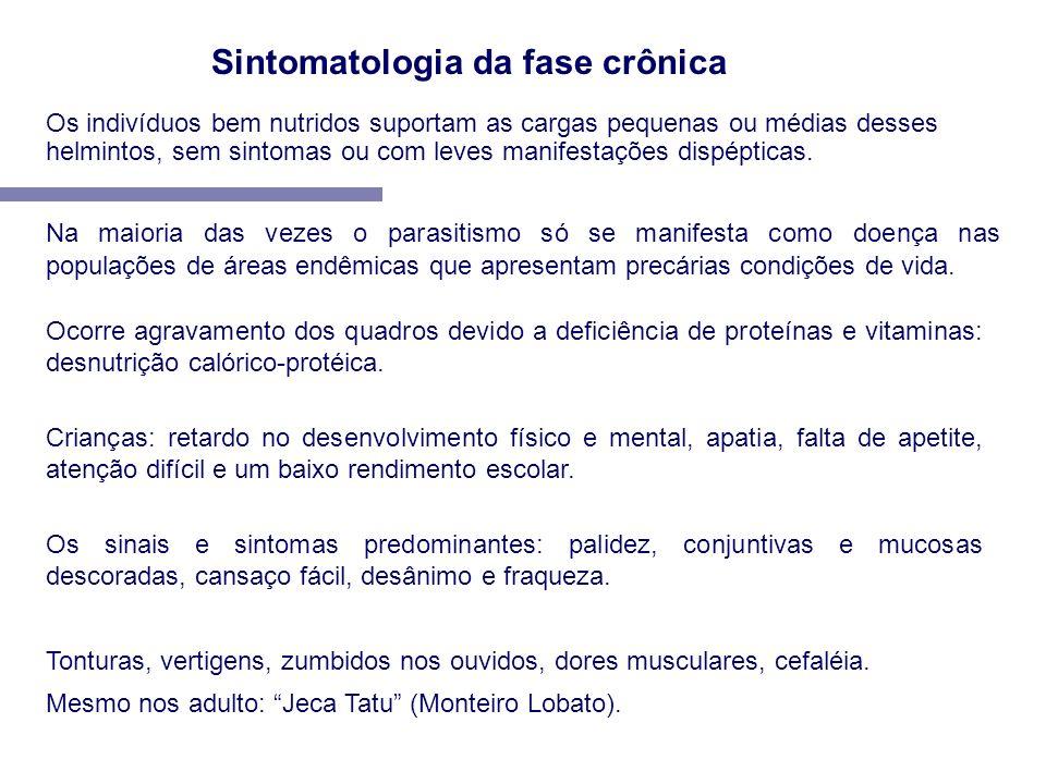 Sintomatologia da fase crônica
