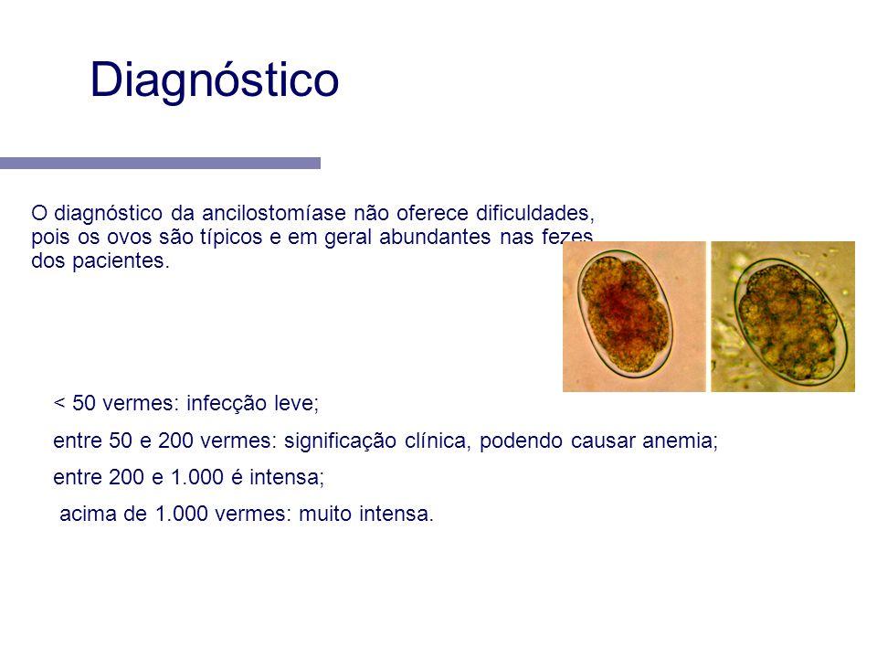 Diagnóstico O diagnóstico da ancilostomíase não oferece dificuldades, pois os ovos são típicos e em geral abundantes nas fezes dos pacientes.