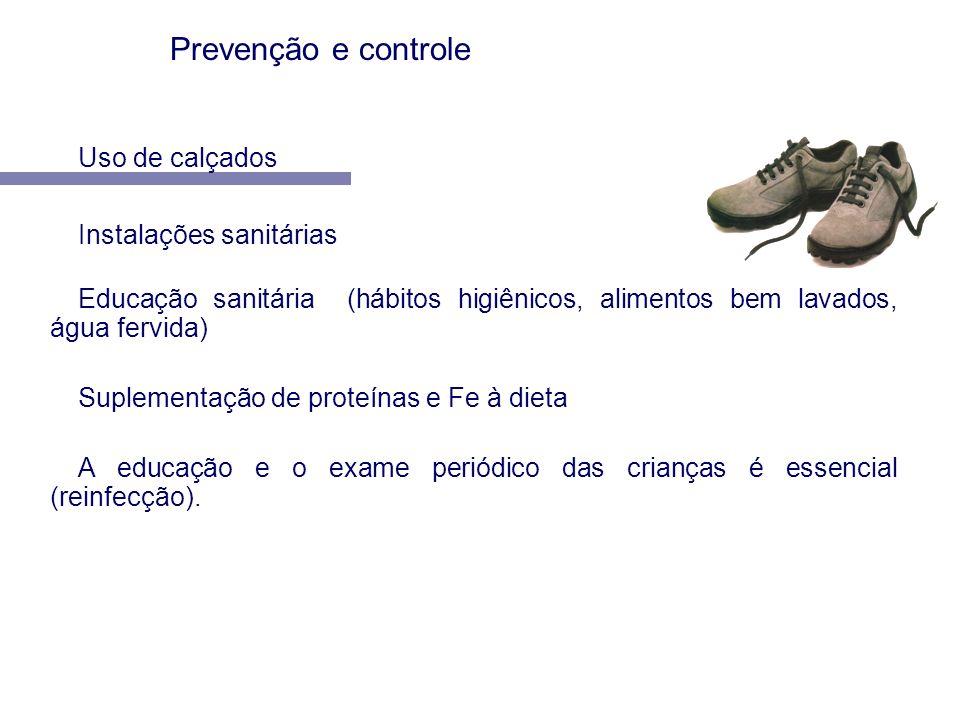 Prevenção e controle Uso de calçados Instalações sanitárias