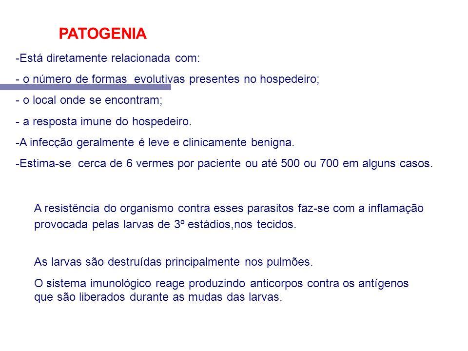 PATOGENIA Está diretamente relacionada com: