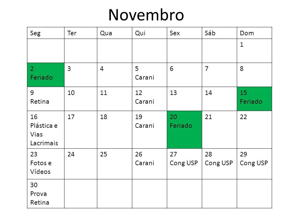 Novembro Seg Ter Qua Qui Sex Sáb Dom 1 2 Feriado 3 4 5 Carani 6 7 8 9