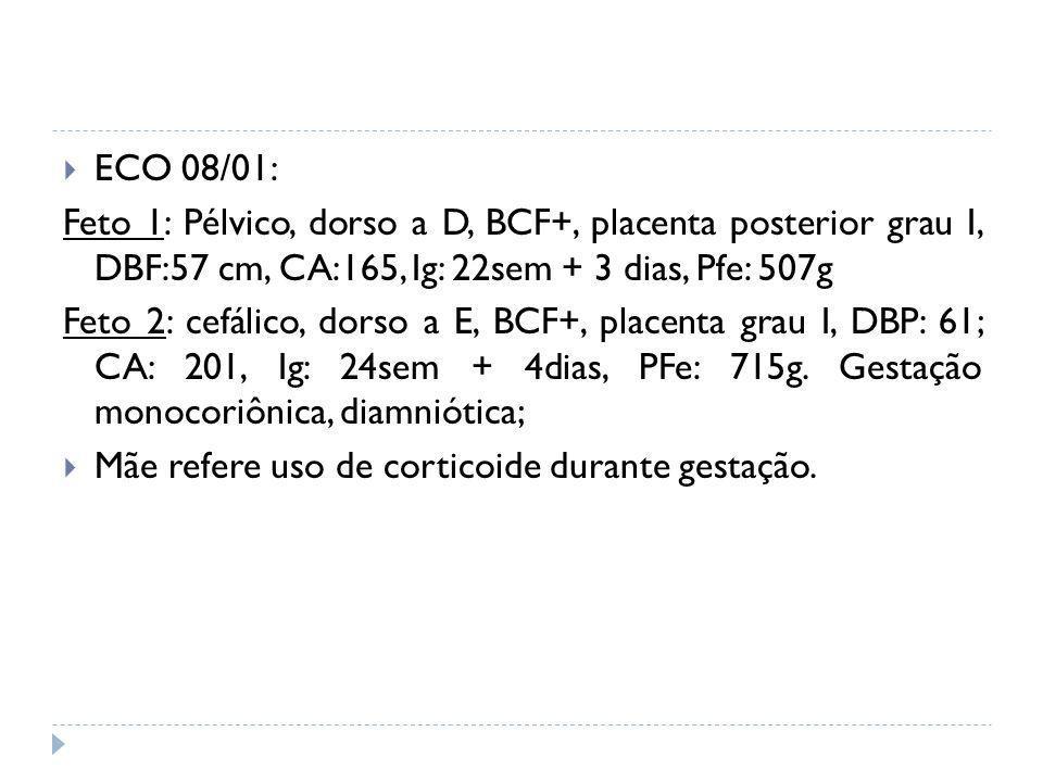 ECO 08/01: Feto 1: Pélvico, dorso a D, BCF+, placenta posterior grau I, DBF:57 cm, CA:165, Ig: 22sem + 3 dias, Pfe: 507g.