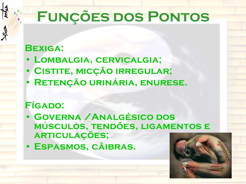 Funções dos Pontos Bexiga: Lombalgia, cervicalgia;