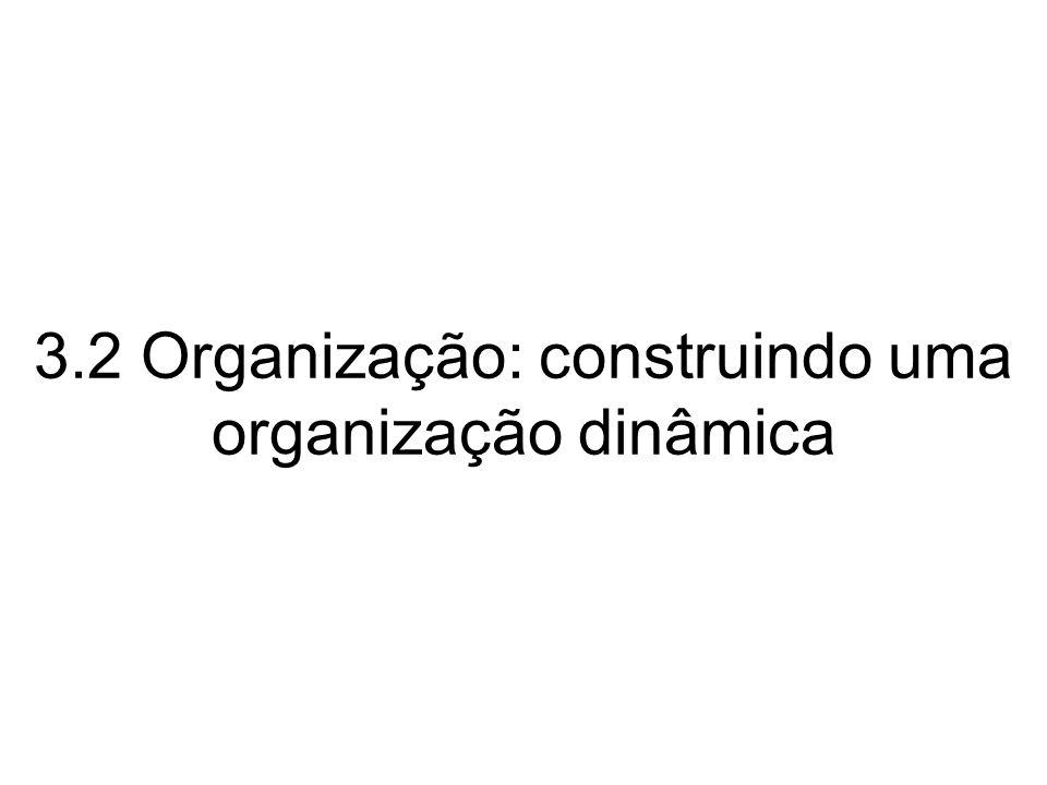 3.2 Organização: construindo uma organização dinâmica