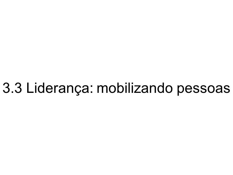 3.3 Liderança: mobilizando pessoas
