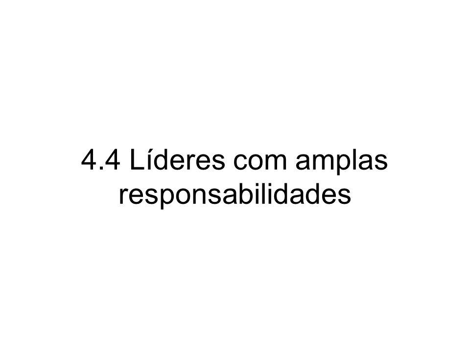 4.4 Líderes com amplas responsabilidades