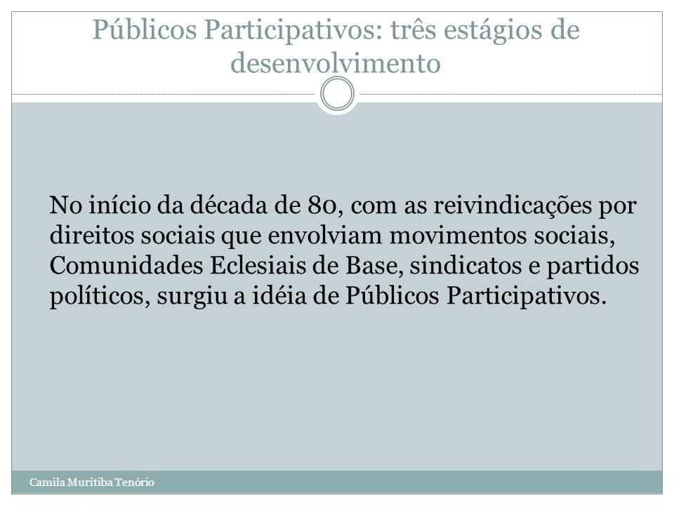 Públicos Participativos: três estágios de desenvolvimento