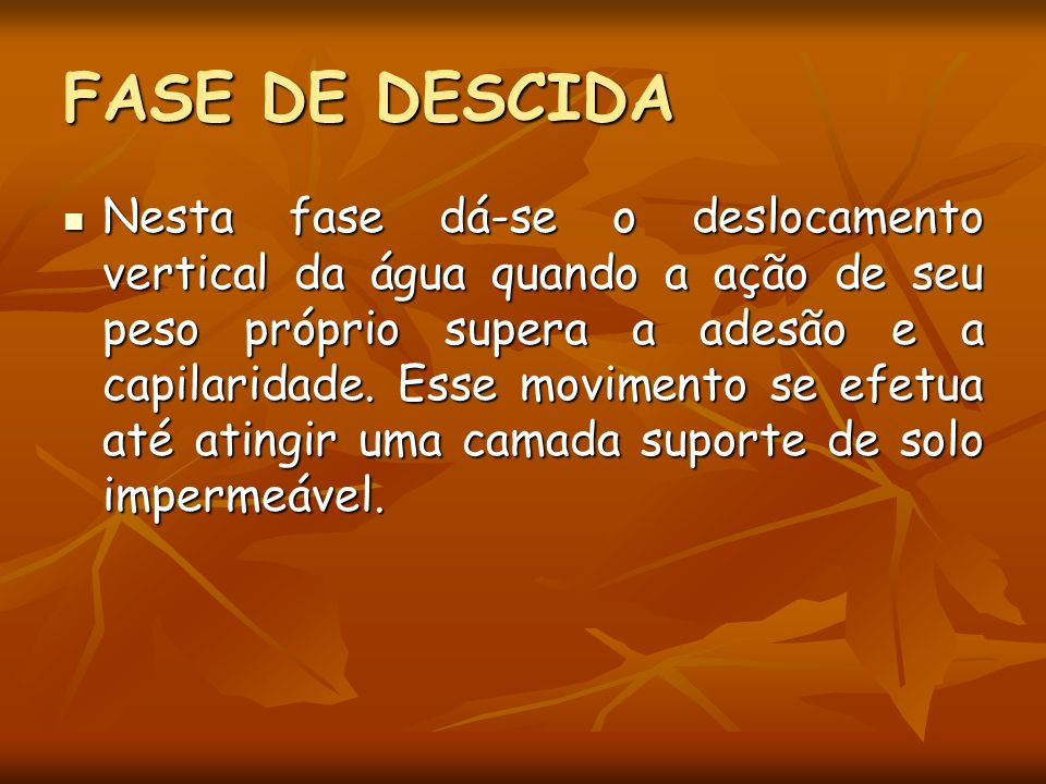 FASE DE DESCIDA