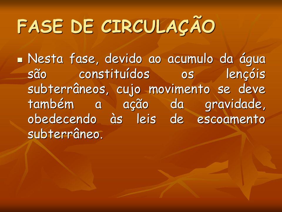 FASE DE CIRCULAÇÃO