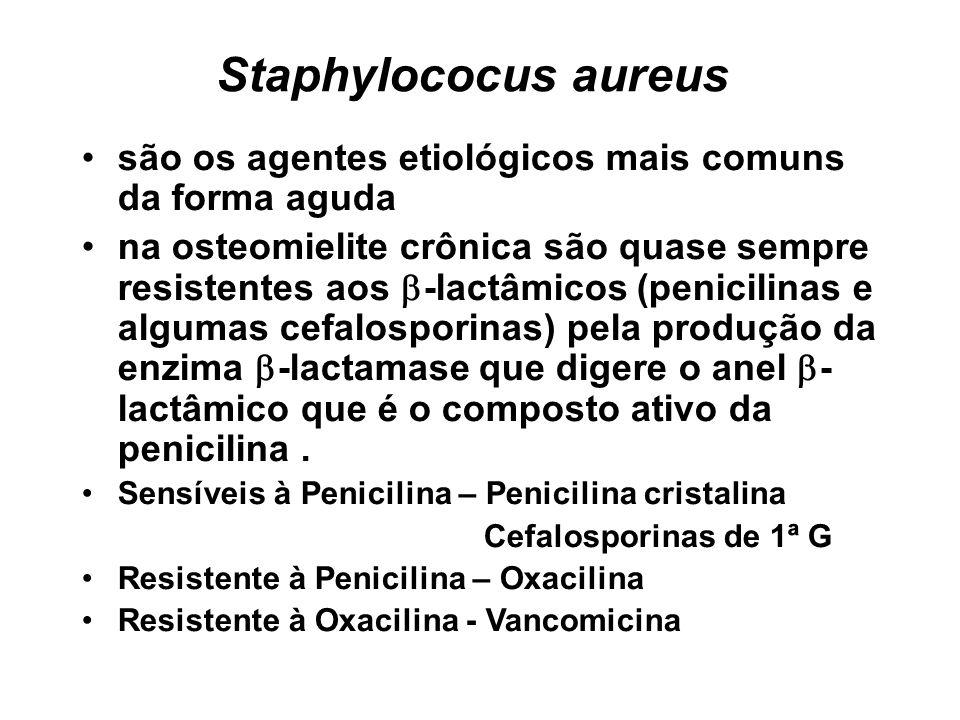 Staphylococus aureus são os agentes etiológicos mais comuns da forma aguda.