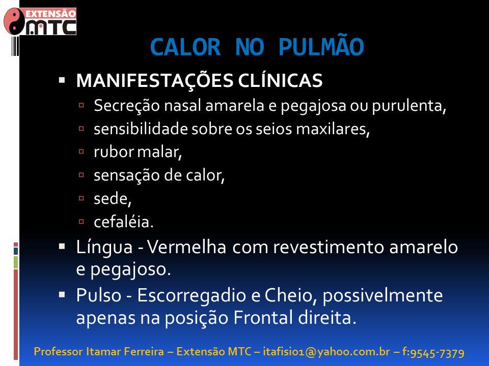 CALOR NO PULMÃO MANIFESTAÇÕES CLÍNICAS