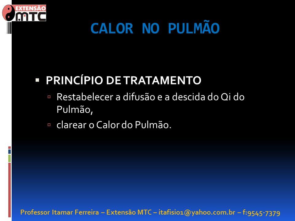 CALOR NO PULMÃO PRINCÍPIO DE TRATAMENTO