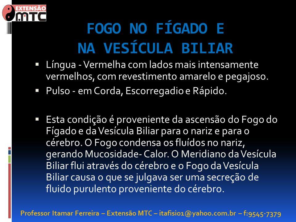 FOGO NO FÍGADO E NA VESÍCULA BILIAR
