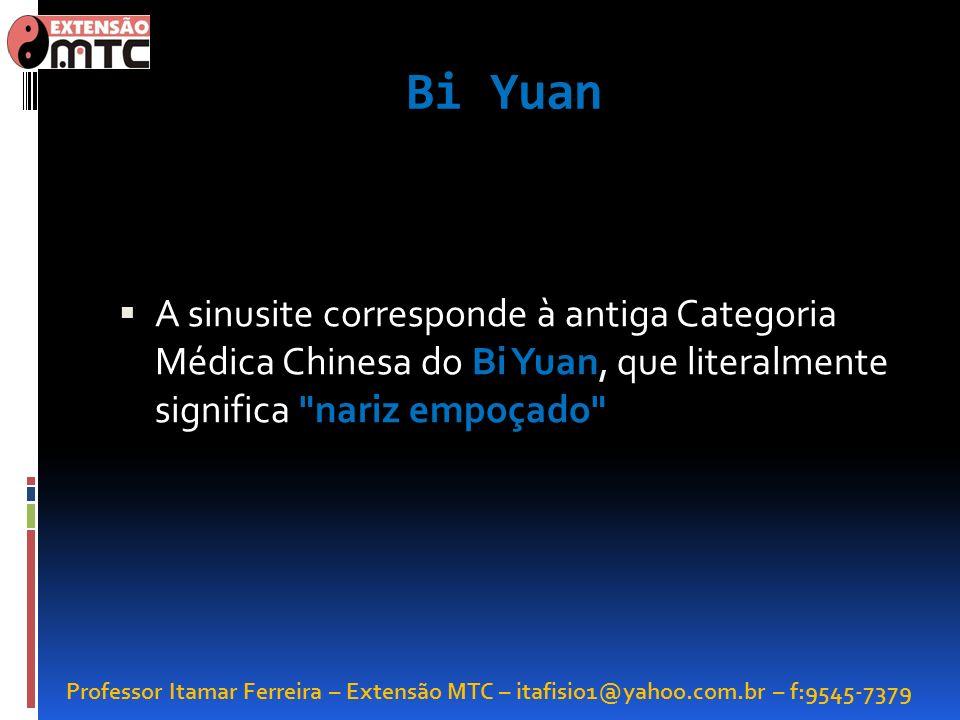 Bi YuanA sinusite corresponde à antiga Categoria Médica Chinesa do Bi Yuan, que literalmente significa nariz empoçado