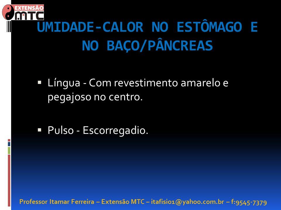 UMIDADE-CALOR NO ESTÔMAGO E NO BAÇO/PÂNCREAS