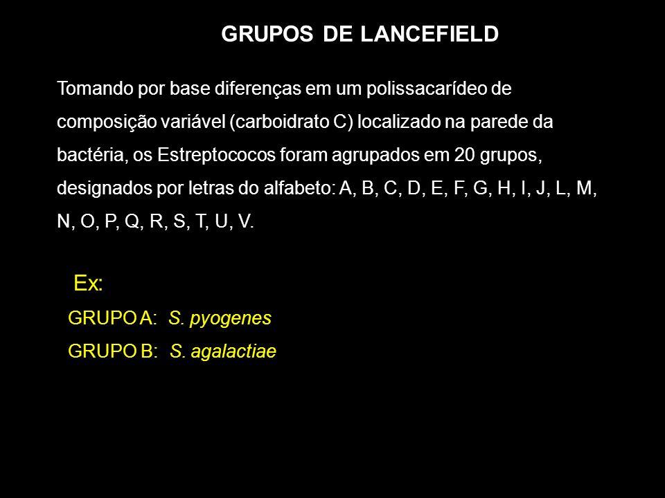 GRUPOS DE LANCEFIELD Ex:
