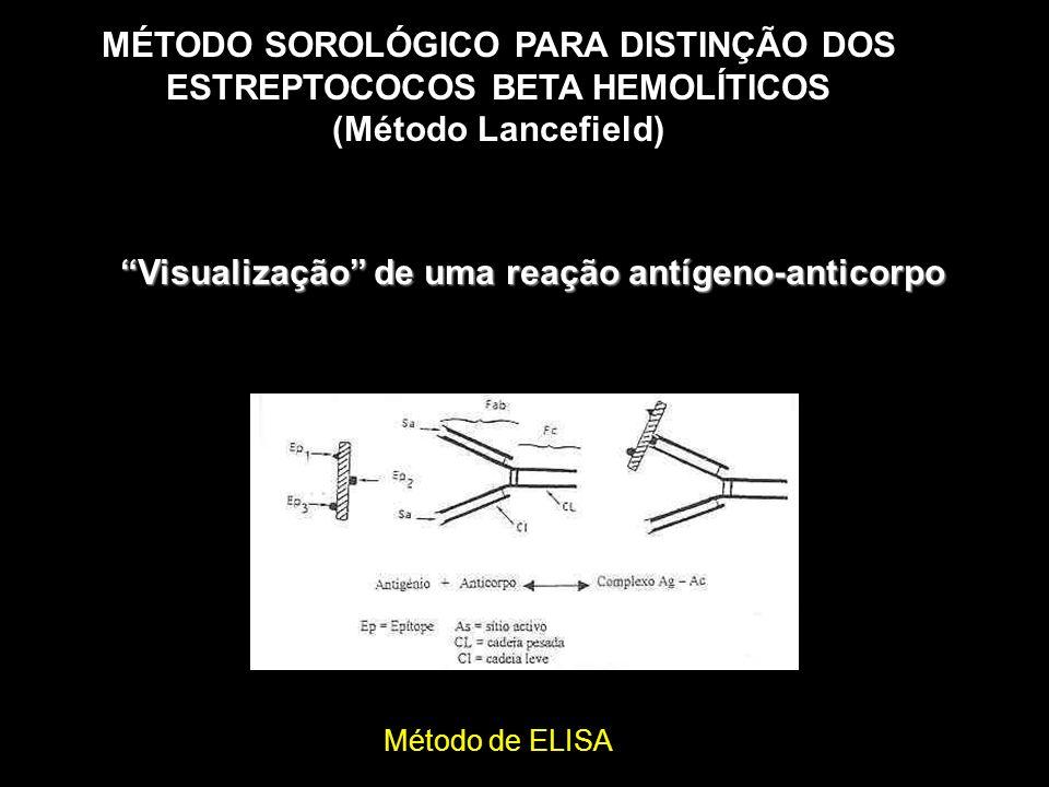 Visualização de uma reação antígeno-anticorpo