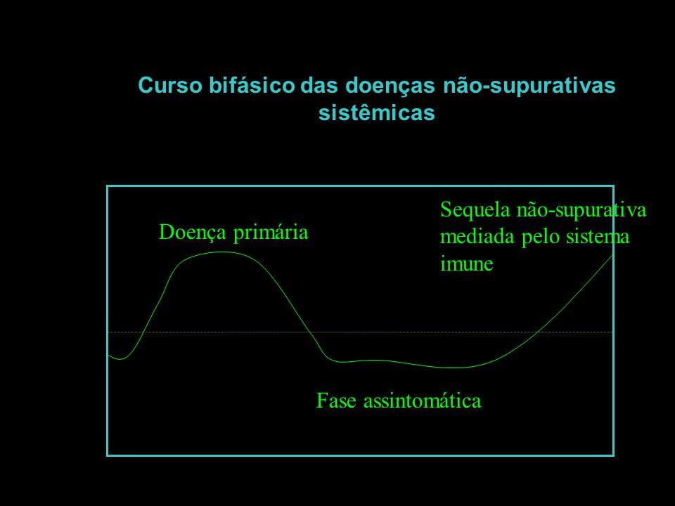 Curso bifásico das doenças não-supurativas sistêmicas