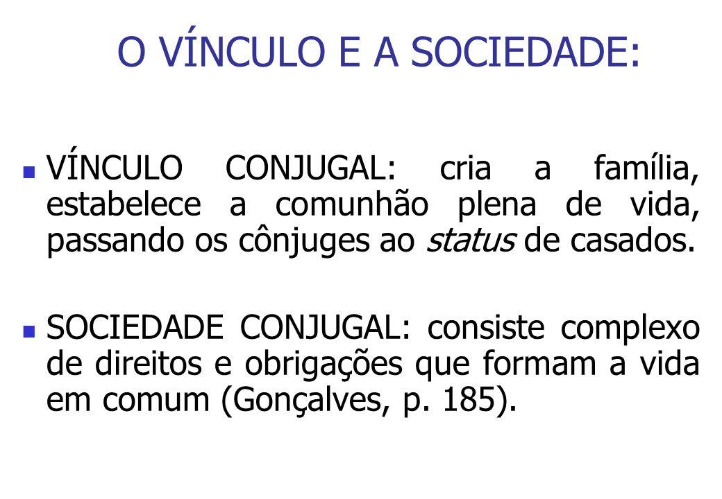 O VÍNCULO E A SOCIEDADE: