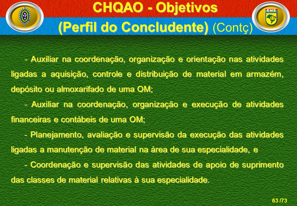 (Perfil do Concludente) (Contç)