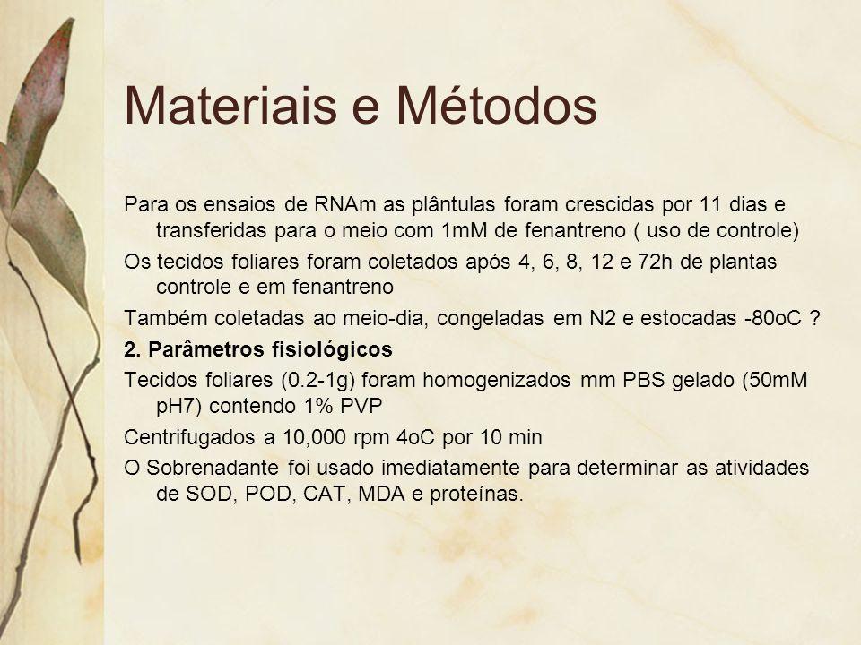 Materiais e Métodos