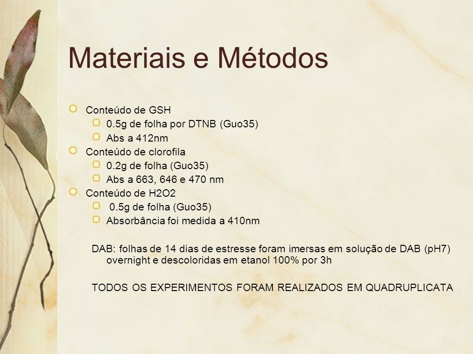 Materiais e Métodos Conteúdo de GSH 0.5g de folha por DTNB (Guo35)