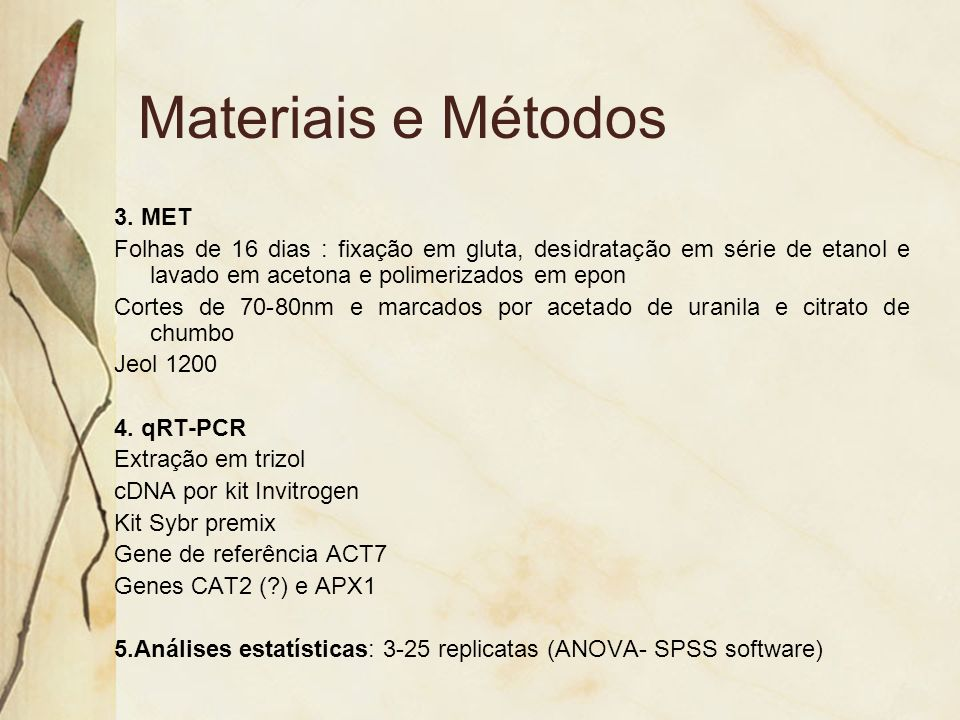 Materiais e Métodos 3. MET