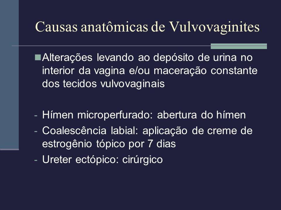 Causas anatômicas de Vulvovaginites
